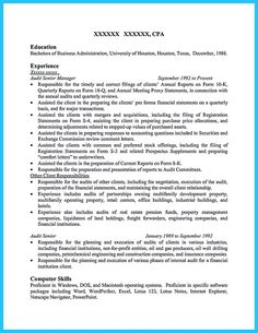 nice understanding a generally accepted auditor resume