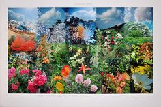 Peter Hutchinson, Inharmonious Seasons , 2011  Photo collage with text  40 x 60 inches