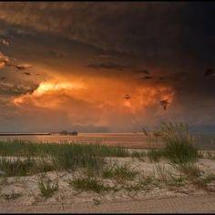 Alex North Photo, Mississippi Gulf Coast
