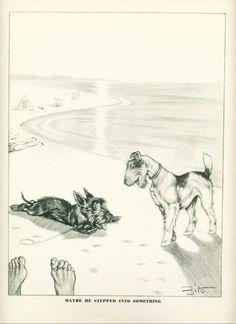 Vintage Dog Print 1941 Scottish Terrier Wire Fox Terrier at The Beach |