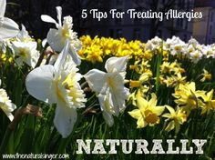 5 Tips For Treating Allergies - It's that time of year again. Here are some tried and true natural tips to keep your sneezing and runny nose under control. #allergyrelief