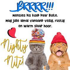 Goeie Nag, Goeie More, Afrikaans, Good Night, Quotations, Motivational, Teddy Bear, Random, Winter
