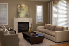 Image result for silhouette shades with drapery side panels living rooms