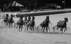 Hawthorne Race Track