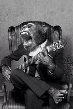 Monkey Im Planning On Being The Next Elvis Birthday Wishes