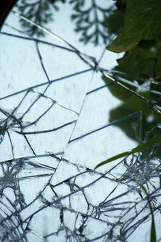 Broken glass is so beautiful...