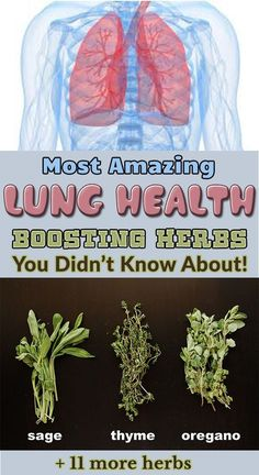 Most Amazing Lung Health Boosting Herbs You Didn't Know About!