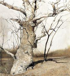 Sycamore (1982) | Andrew Wyeth