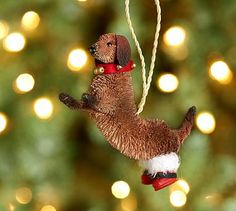 Bottle Brush Standing Doxie Ornament #potterybarn