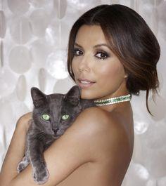 Eva Longoria posing with cat to promote Sheba cat food
