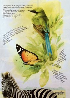Uit Libelle