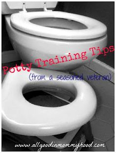 Potty Time? Potty Training Tips from a Mom of four.  I like to read all potty training ideas!