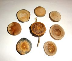Natural wood slices, pine cone slice, jewelry supplies findings