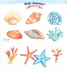 Hello Summer Watercolor Clipart by everysunsun on @creativemarket