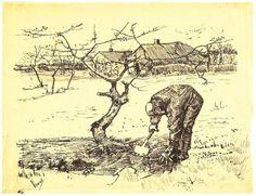 Vincent van Gogh Gardener near a Gnarled Apple Tree Graphic