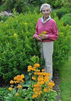 The Beth Chatto Gardens and nursery offer a masterclass in elegant garden design - Telegraph