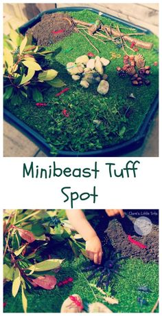 Minibeast Tuff Spot fun minibeast small world idea for toddlers and preschoolers. Great for imaginative and sensory play.