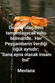#mevlana #sözler  #corekotuyagi #güzelsözler Wise Quotes, Words Quotes, Motivational Quotes, Inspirational Quotes, Sayings, School Diary, Meaningful Lyrics, I Love My Brother, Poetic Words