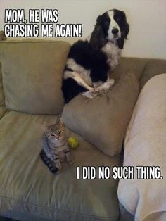 Haha - this happens all the time at our house.