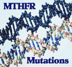 Welcome and Thank you for stopping by! BEFORE YOU READ MY BLOG, IT IS IMPORTANT TO UNDERSTAND JUST WHAT MTHFR IS.... MTHFR stands for MethyleneteTraHydMTHFR mutationsroFolate Reductase.(aka:hyperho...