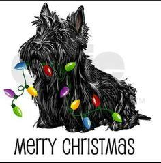 Милые Животные, Собака Поделки, Рождественская Собака, Веселого Рождества, Рождественские Открытки, Рождество, Tatoo, Животные, Kunst