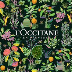 L'Occitane - Llew Mejia   VISUALGRAPHC
