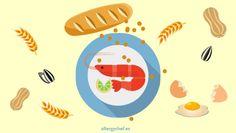 reglamento-alergenos-restaurantes-alergias-gluten-lactosa-allergychef-01
