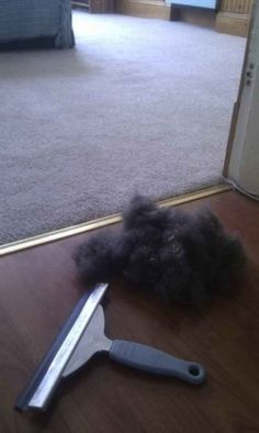 Use a squeegee to remove pet hair from carpet. | 41 Creative DIY Hacks To Improve Your Home