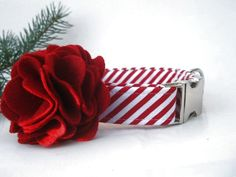 Peppermint Stick Christmas Dog Collar with Nickel Plate Hardware and Red Flower Accessory by BigpawCollars on Etsy https://www.etsy.com/listing/75786801/peppermint-stick-christmas-dog-collar