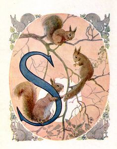 Margaret Tarrant's Animal ABC...S is for Squirrel (of course!)