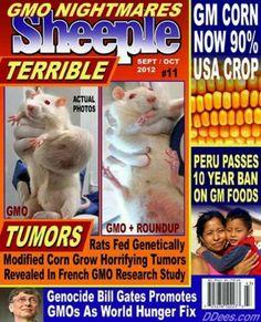 say NO to  Monsantos GMO foods!!! #monsanto #gmo #geneticallymodified