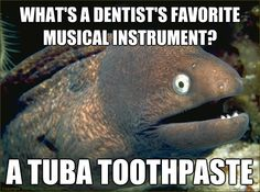 what's a dentist's favorite musical instrument? a tuba toothpaste  Bad Joke Eel