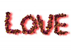 LOVE with dried rose petals