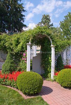 Classic American Garden with Blue Sky | Plant & Flower Stock Photography: GardenPhotos.com