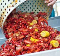 Cajun Crawfish Boil. YUM! I miss the Cajun-Zeideco festivals they used to have down here. I think we need to take a trip to New Orleans.