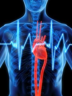 Oral Health is Overall Health - Heart Disease and Stroke #dentistry #oralhealth #health