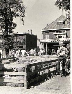 markt 1975 Ede
