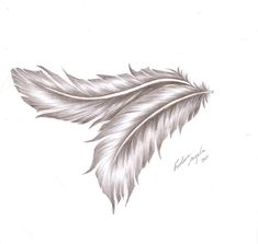 Angelic feather by FadwaAngela.deviantart.com on @deviantART