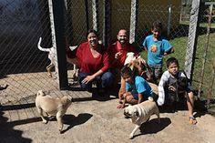 """""""O GRITO DO BICHO"""": Família conta aventuras e alegrias de ter 14 cacho..."""