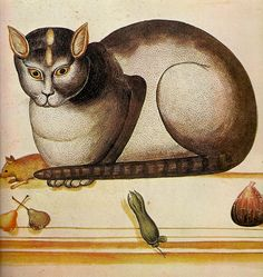 Ulisse Aldrovandi (Italian, 1522-1605) - Cat on ledge with mouse and fruit (detail), c. 1580