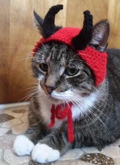 Questo cappello adorabile piccolo diavolo è perfetto per il piccolo diavolo nella vostra vita, o un grande regalo per quel gatto che sempre si guarda dalla finestra del vicino.  Questa cappello si adatta media dimensioni gatti e cani di piccole taglia ed è costituita da filati di acrilico per la durevolezza.  Desideri questo cappello in una dimensione diversa? Solo messaggio me