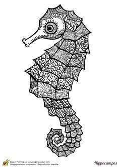 Dessin à colorier d'un hippocampe mandala - Hugolescargot.com