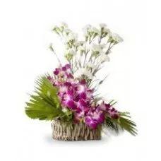 Best Of Best   Orchids & Carnations   Carnation Basket