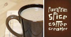 Pumpkin Spice Coffee Creamer by Alli 'n Son, via Flickr