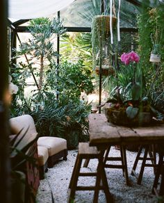Plants and furniture....via Friends and Lovers