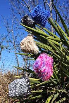 Crocheted beanies by Calder Creations (Photo credit to Ashlee Newman Photography)