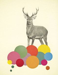 Poster   STAG IN HEAVEN von Cassia Beck   more posters at http://moreposter.de
