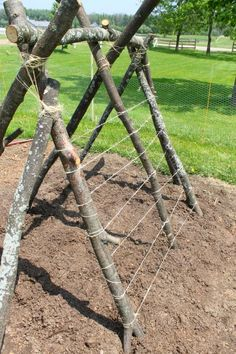 How to make a snap pea trellis fort for kids! What a fun way to get kids into the garden this summer. And a great pea trellis idea too! Gardening with kids and get some work done too while they play.