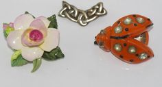 French early plastic beetle brooch (bought as bakelite) circa 1930s, Silver Iona…
