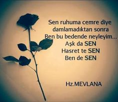 Güzel Sözler Mevlana Love Quotes ~ Beautiful Quotes Book Your Photos and Leave Memories to Your Children We are at your service with the option to boo. Book Quotes, Life Quotes, Create A Family, First Love, My Love, True Words, Islamic Quotes, Cool Words, Karma